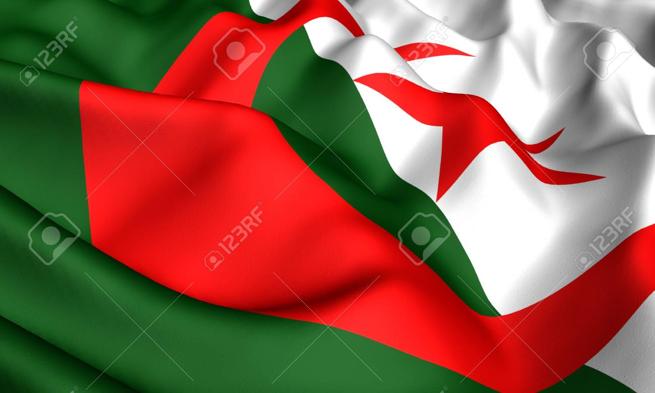 Flag of Algeria. Close up. Front view. Stock Photo - 8754588
