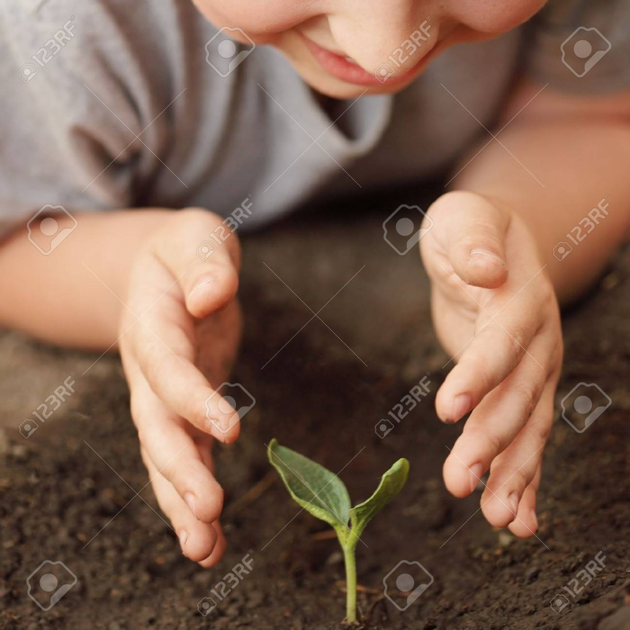 sprout in children hand Stock Photo - 14526880