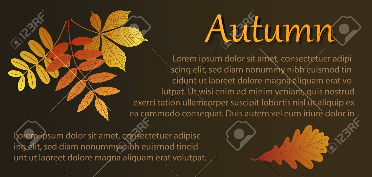 Autumn Illustration With Bouquet Of Leaves And Oak Leaf. Template ...