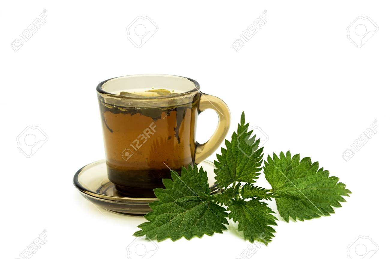 Tea cup with nettles leaves on a white background Standard-Bild - 19635000