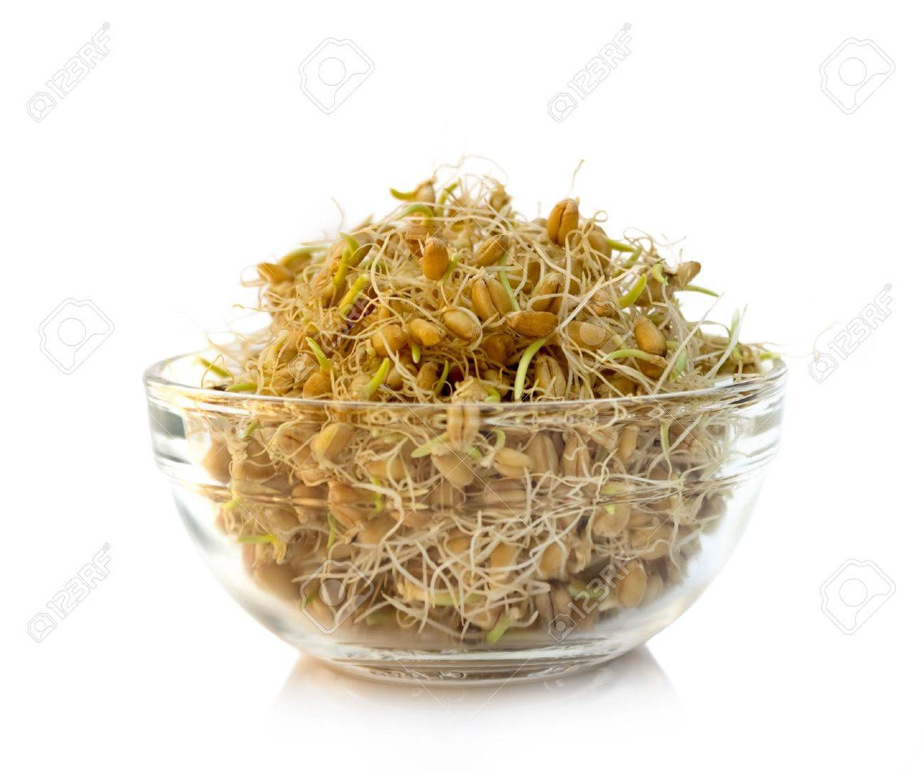 Wheat germs in bowl, ready for eat Standard-Bild - 20956194
