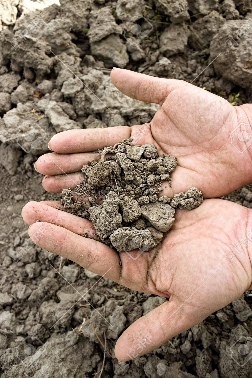 dry soil in hands over cracked land Standard-Bild - 21949013