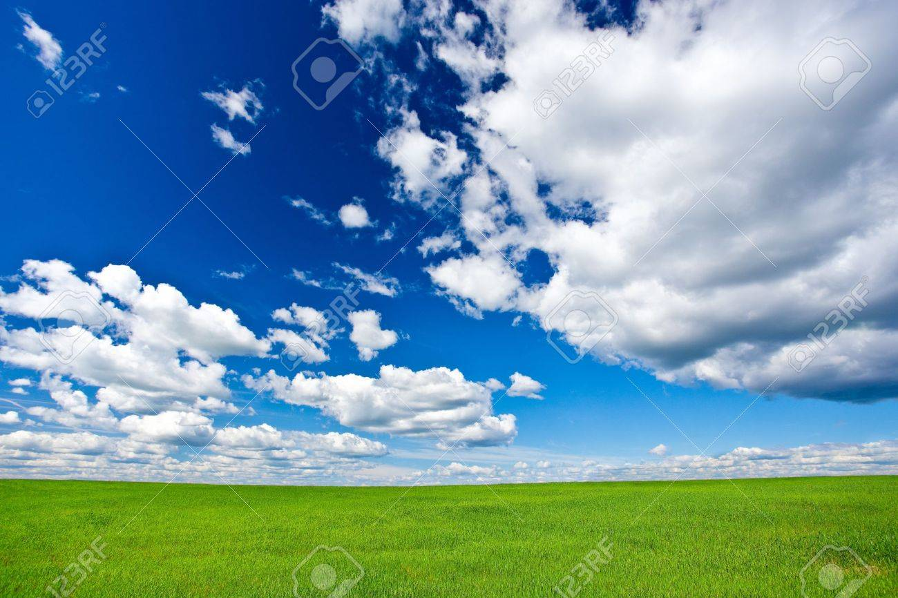 blue skies with clouds above green grass land Stock Photo - 7599801