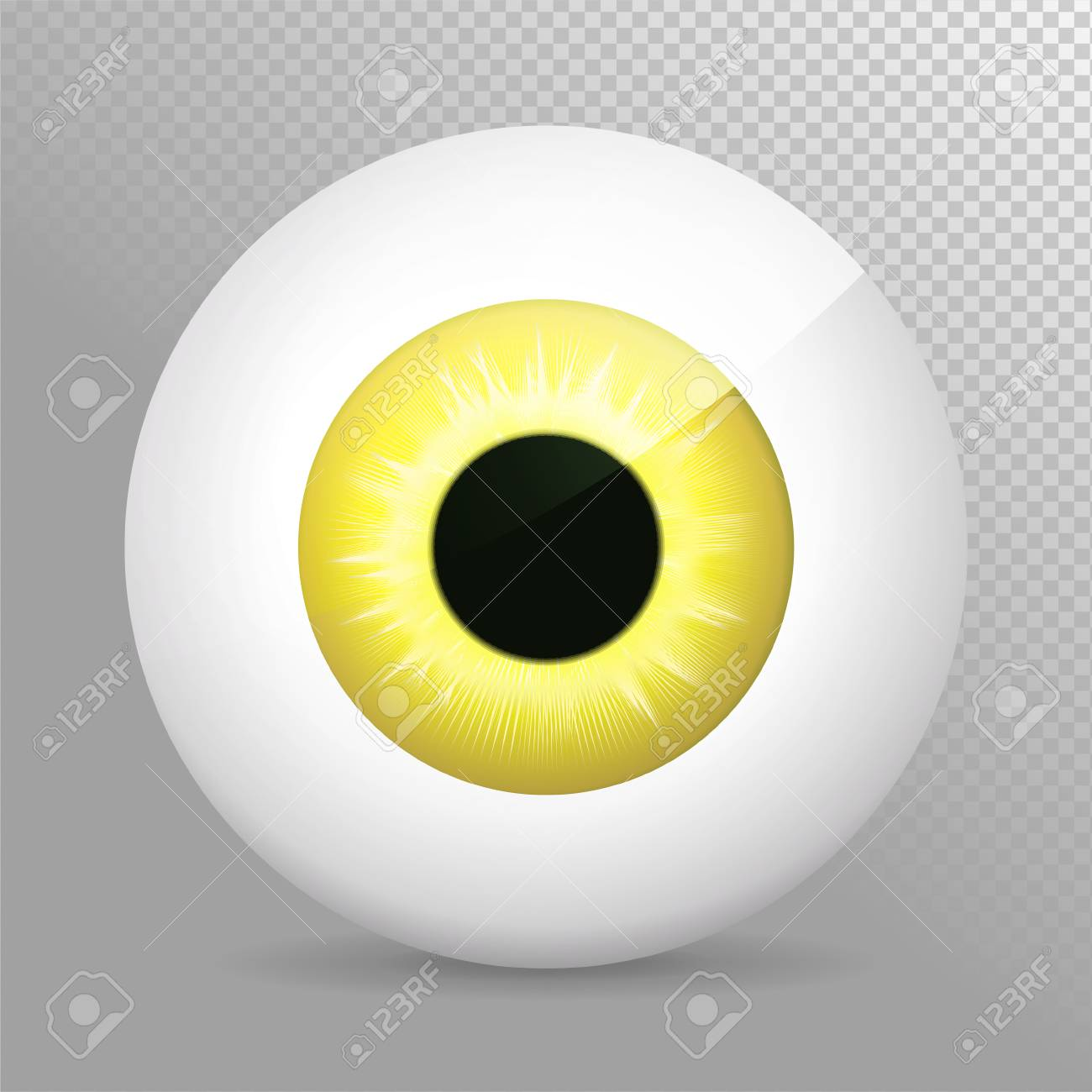 Eye. Realistic 3d Eyeball Vector Illustration. Real Human Iris,pupil ...