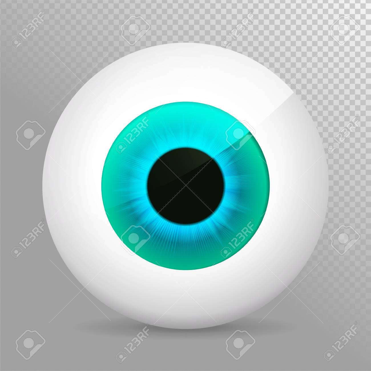 realistic 3d eyeball vector illustration royalty free cliparts rh 123rf com flying eyeball vector free eyeball vector