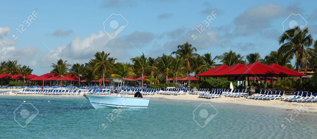 White sand palm tree filled beach lined with beach chairs Stock Photo - 6061934