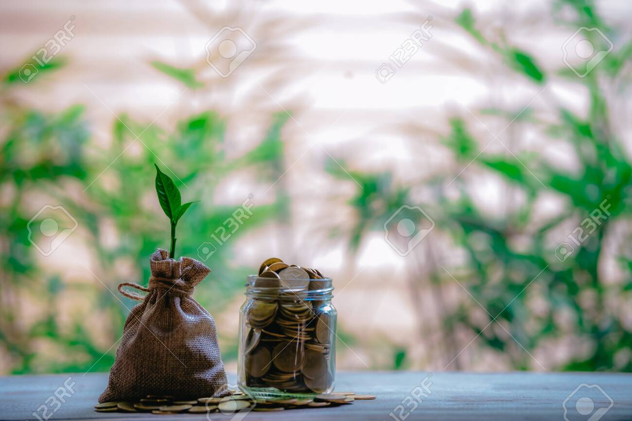 Planting coins in hemp bags - investment ideas for growth - 122398524