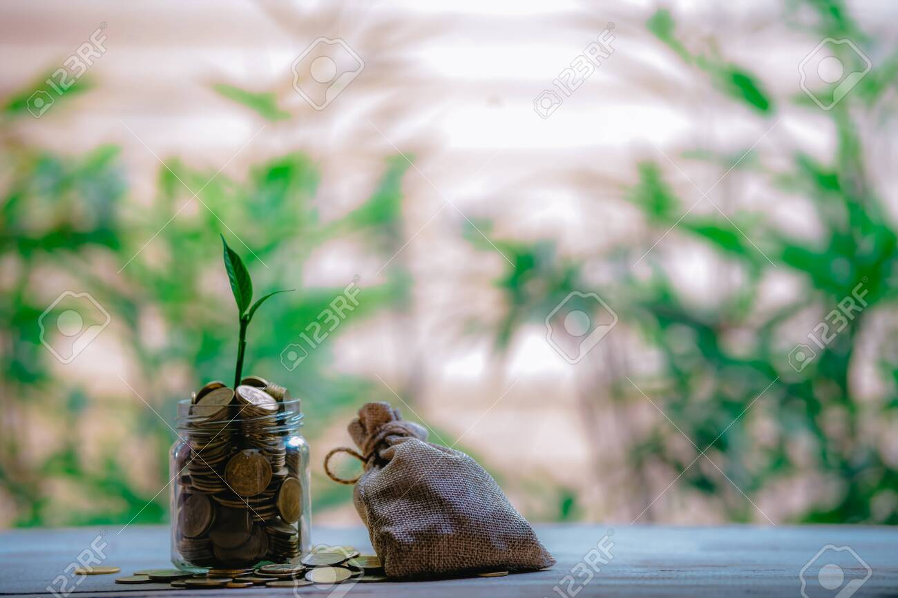 Glass jar with coins Plant seedlings grow on bottles - investment ideas for growth - 122398520