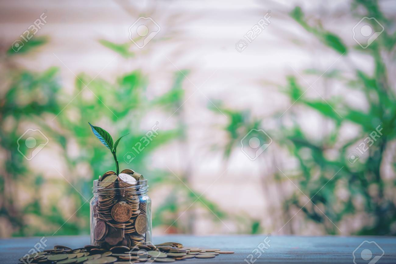 Cropping on coins - investment ideas for growth - 122398530