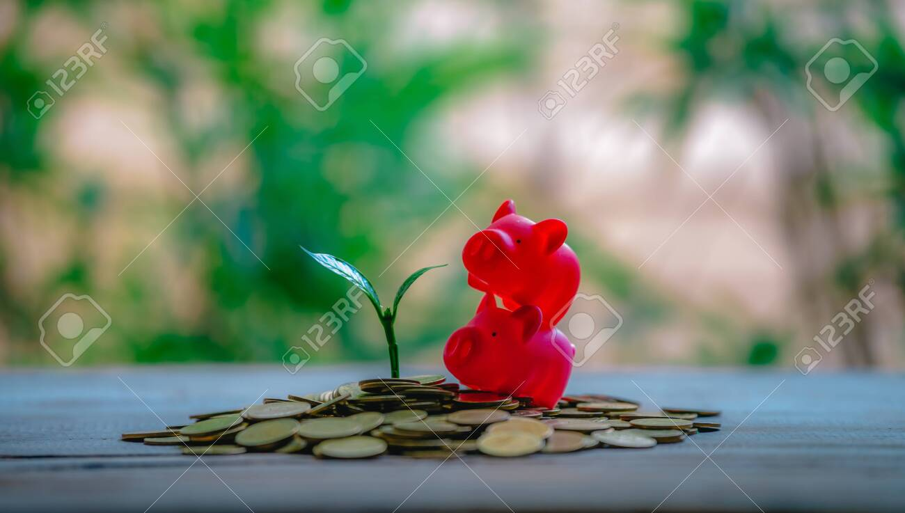 Cropping on coins - investment ideas for growth - 122398531