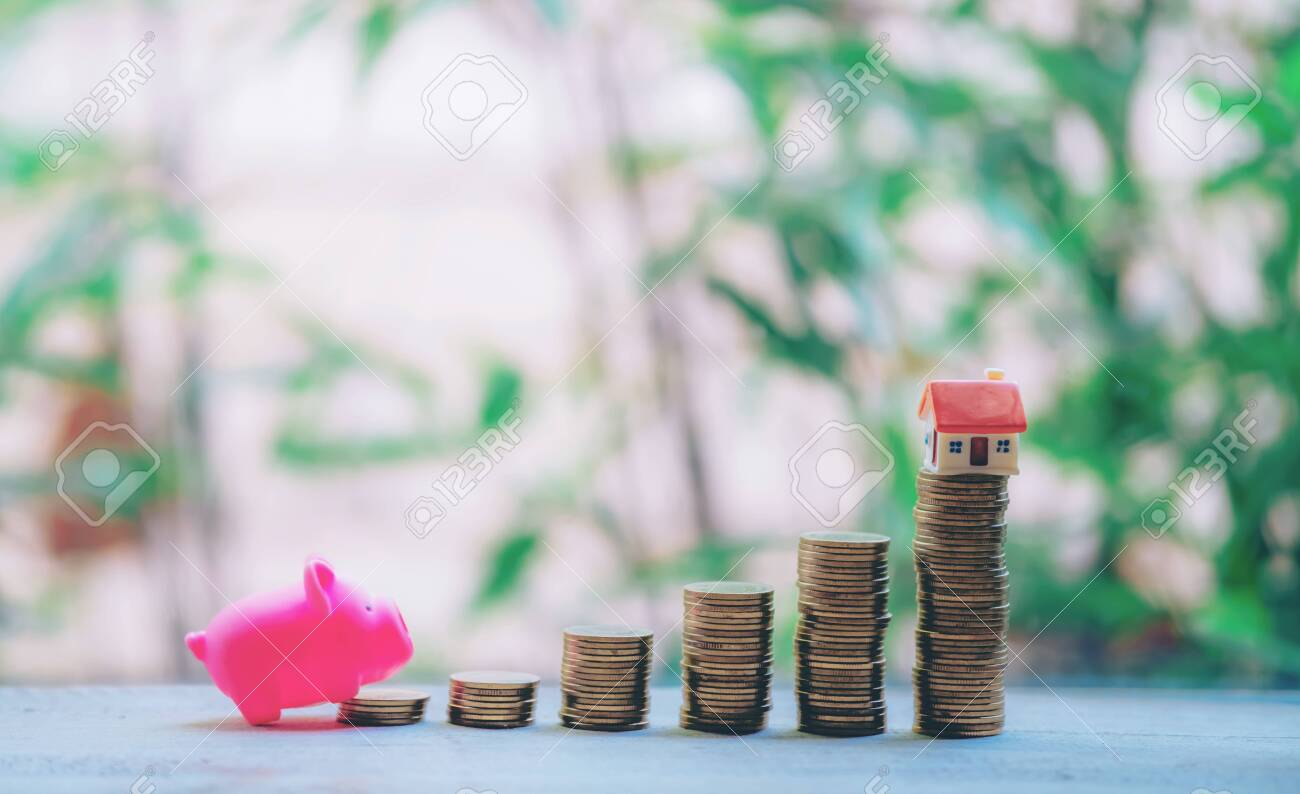Small house add coin column The concept of saving money, investment properties - 122398536
