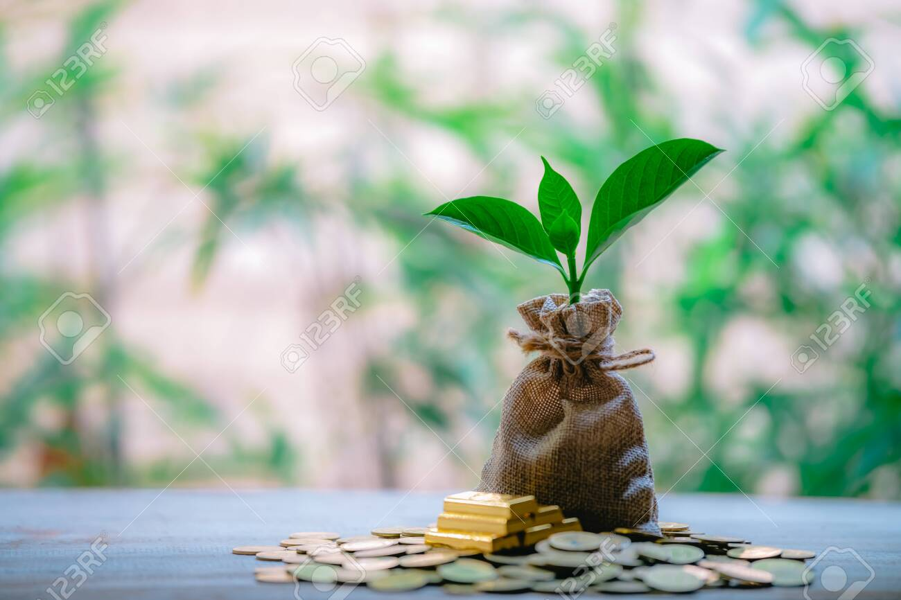 Planting coins in hemp bags - investment ideas for growth - 122398217