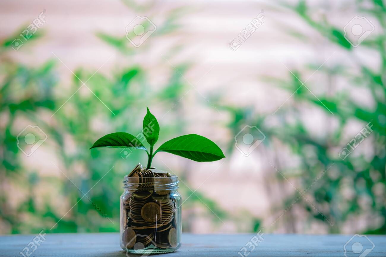 Glass jar with coins Plant seedlings grow on bottles - investment ideas for growth - 122398221