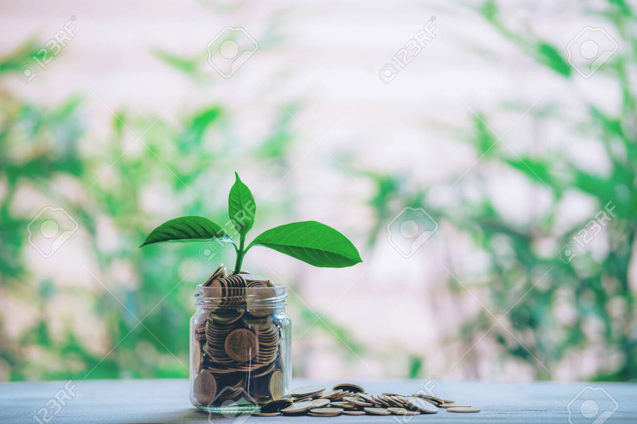 Planting coins in hemp bags - investment ideas for growth - 122398223