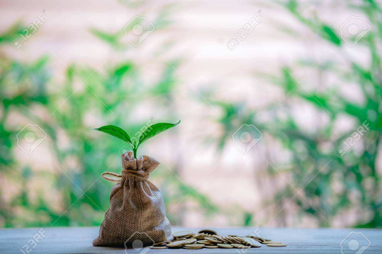 Planting coins in hemp bags - investment ideas for growth - 122398225