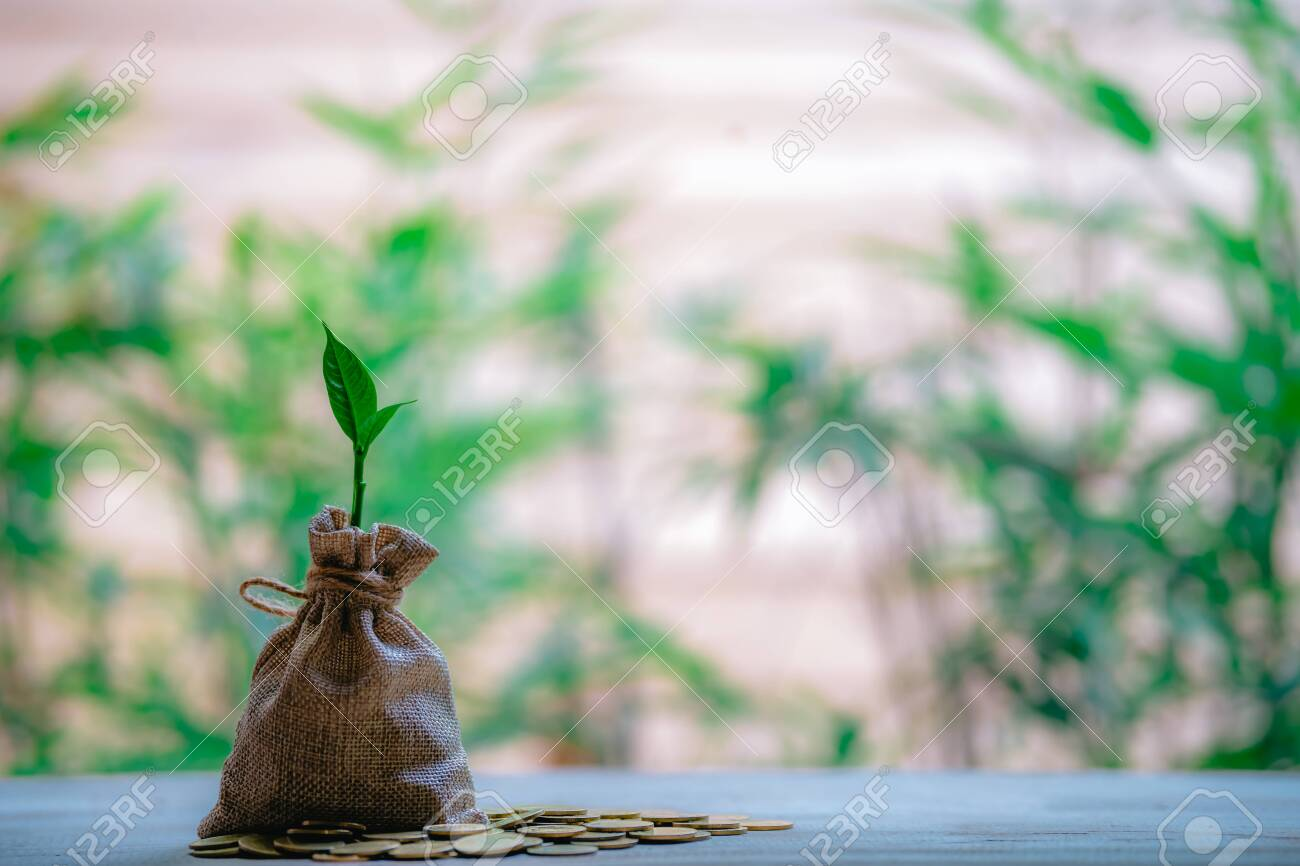 Planting coins in hemp bags - investment ideas for growth - 122398228