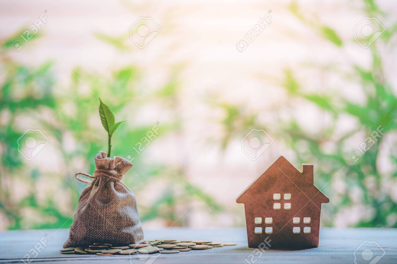 Small house add coin column The concept of saving money, investment properties - 122398229