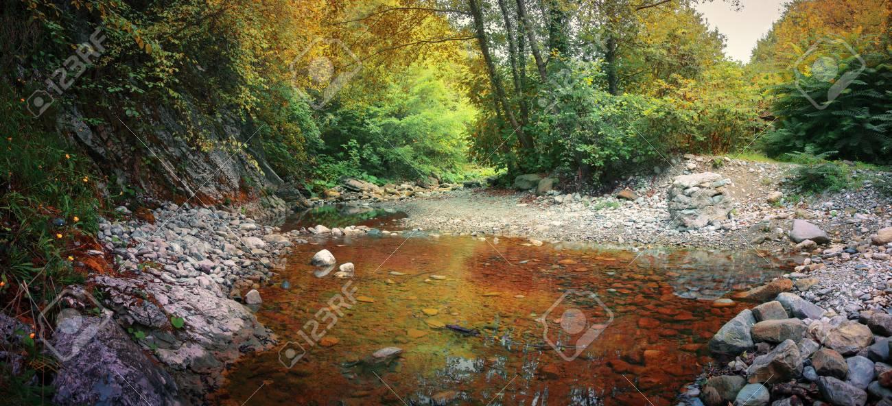 Letto Del Fiume.Il Letto Del Fiume Del Fiume Di Montagna Nella Foresta