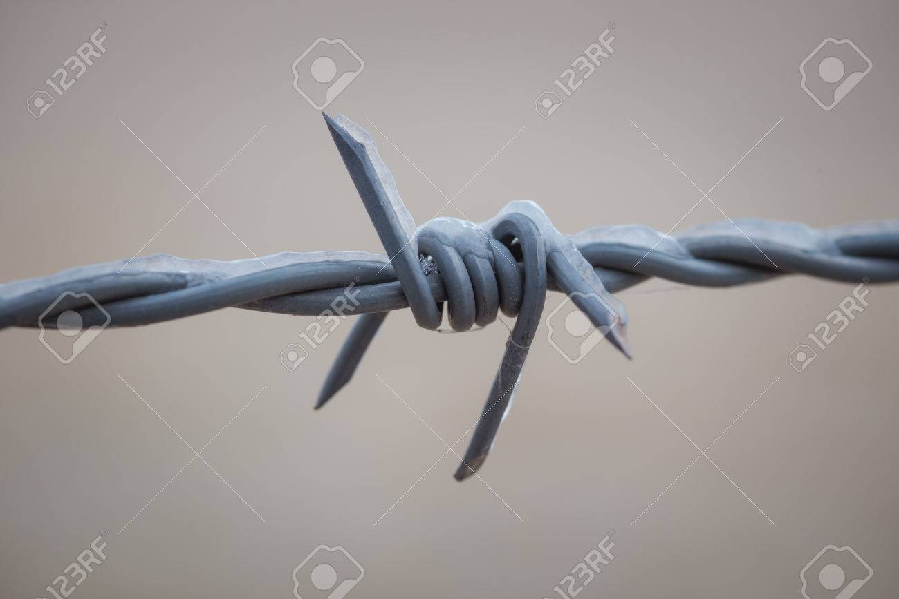 Barbed Wire Up Close With Cob Web And Ice. Stock Photo, Picture And ...