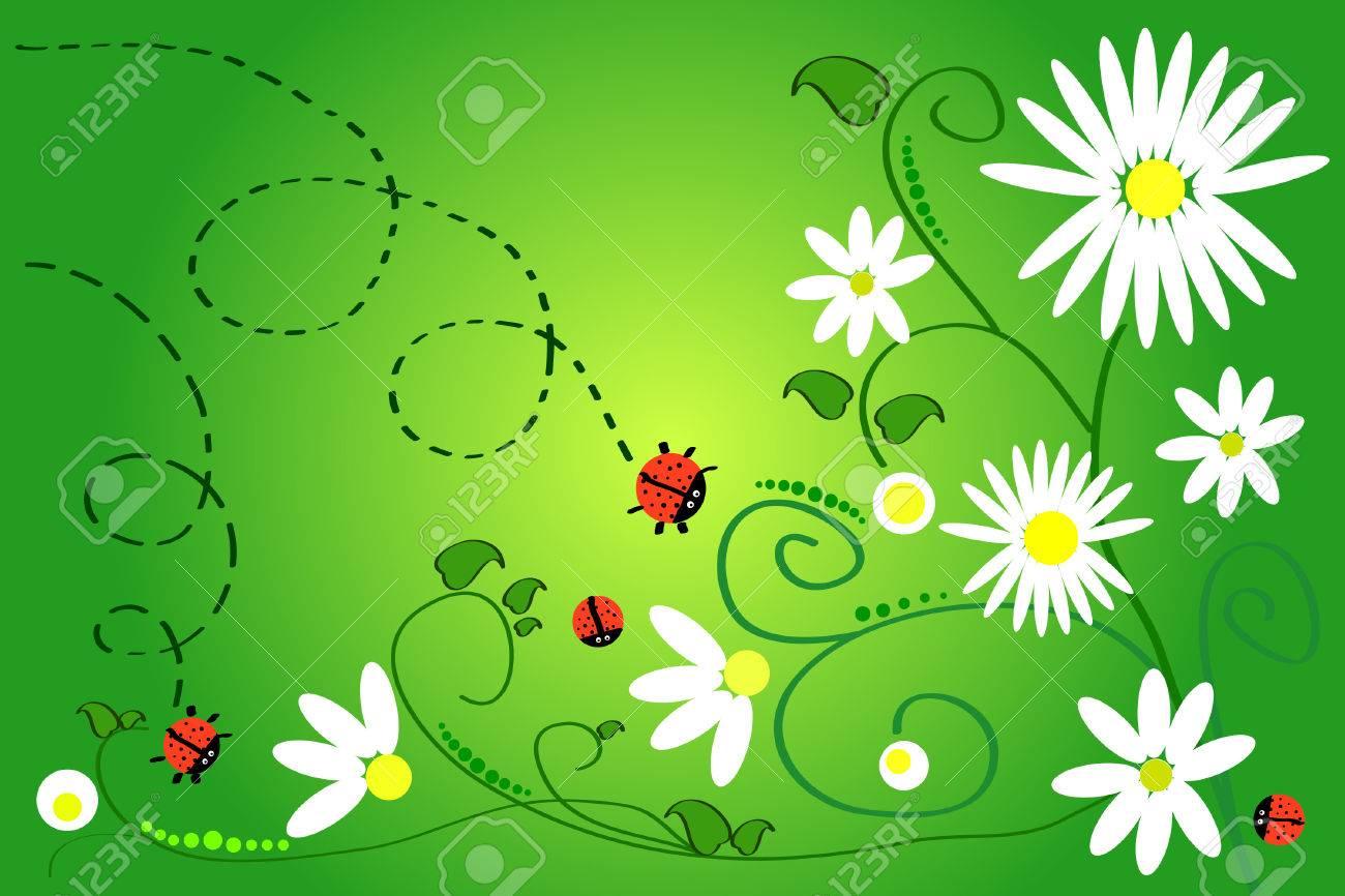 beautiful art: ladybug and chamomile on green background Stock Vector - 6639952
