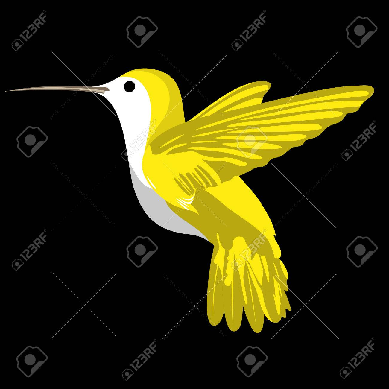 Set with africa animals black white stock vector 169 insima - Profile Wings Cute Humming Bird On Black Background Illustration