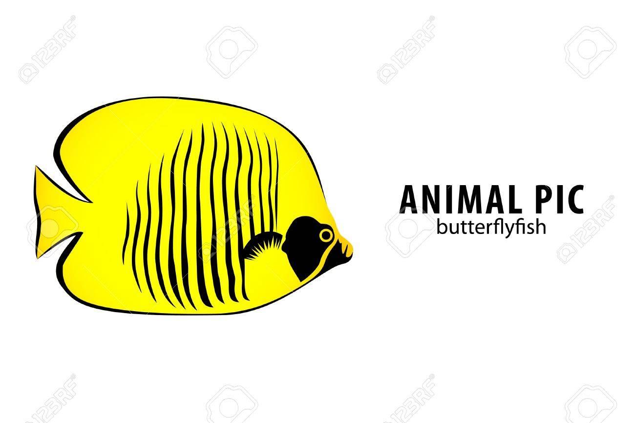 golden butterfly fish on white (illustration) Stock Vector - 9675152