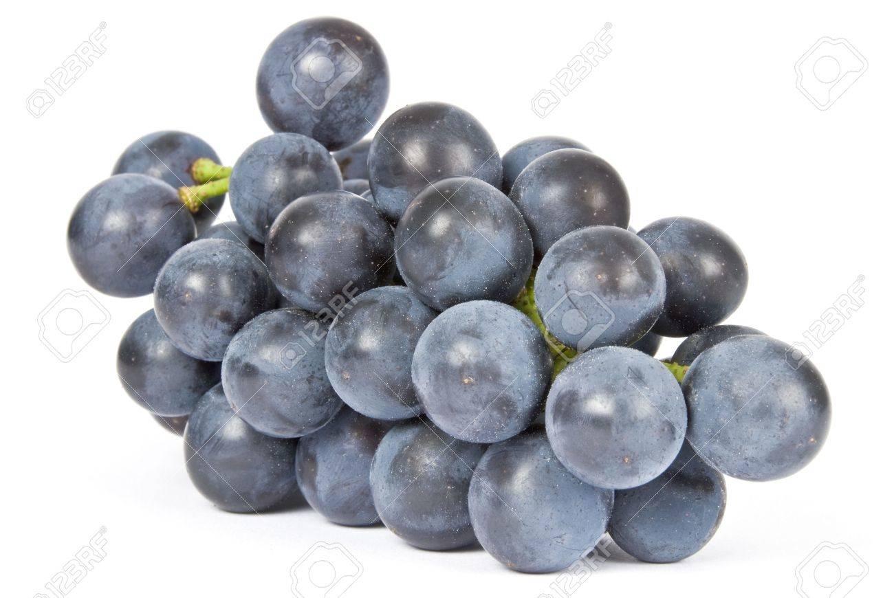 Paars Druiven Geisoleerd Op Wit Royalty Vrije Foto Plaatjes Beelden En Stock Fotografie Image 3511784