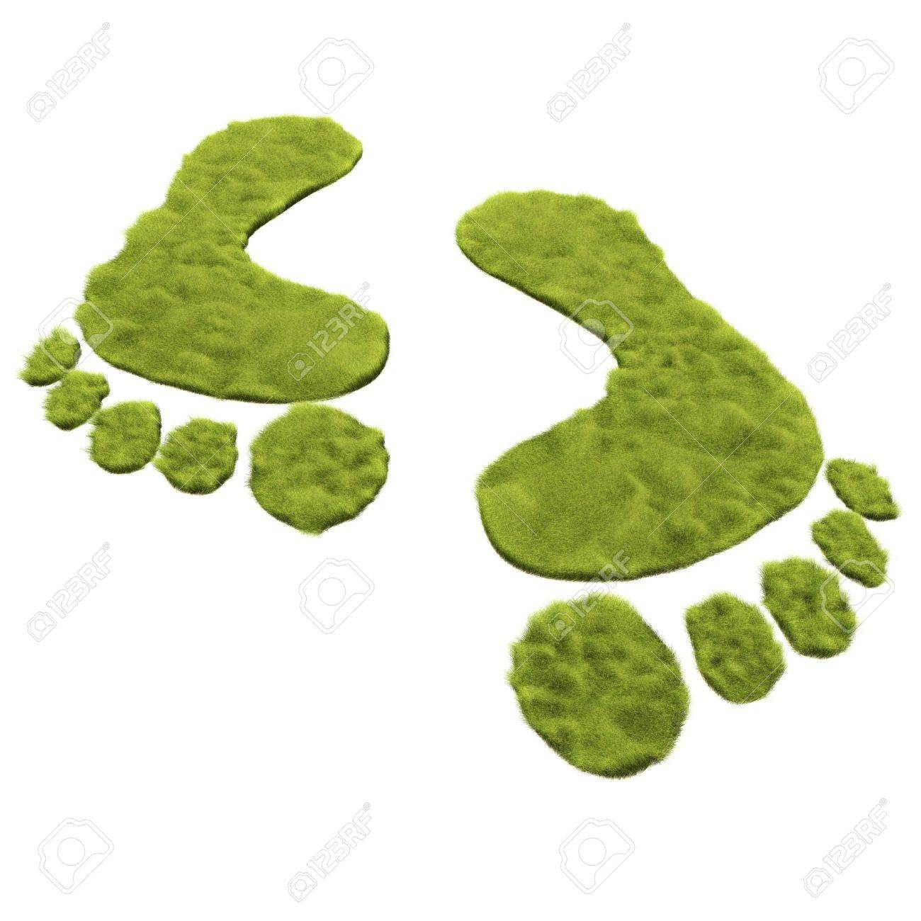 Green grass foot print is to promote the green move instead of carbon foot print Stock Photo - 6279955