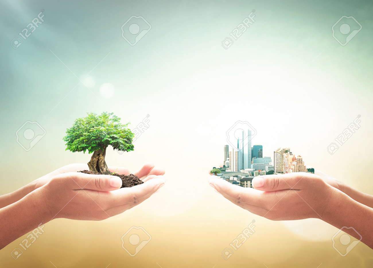 Sustainable development goal (SDGs) concept: Two human hands holding big tree and city over blurred green nature background - 156162911