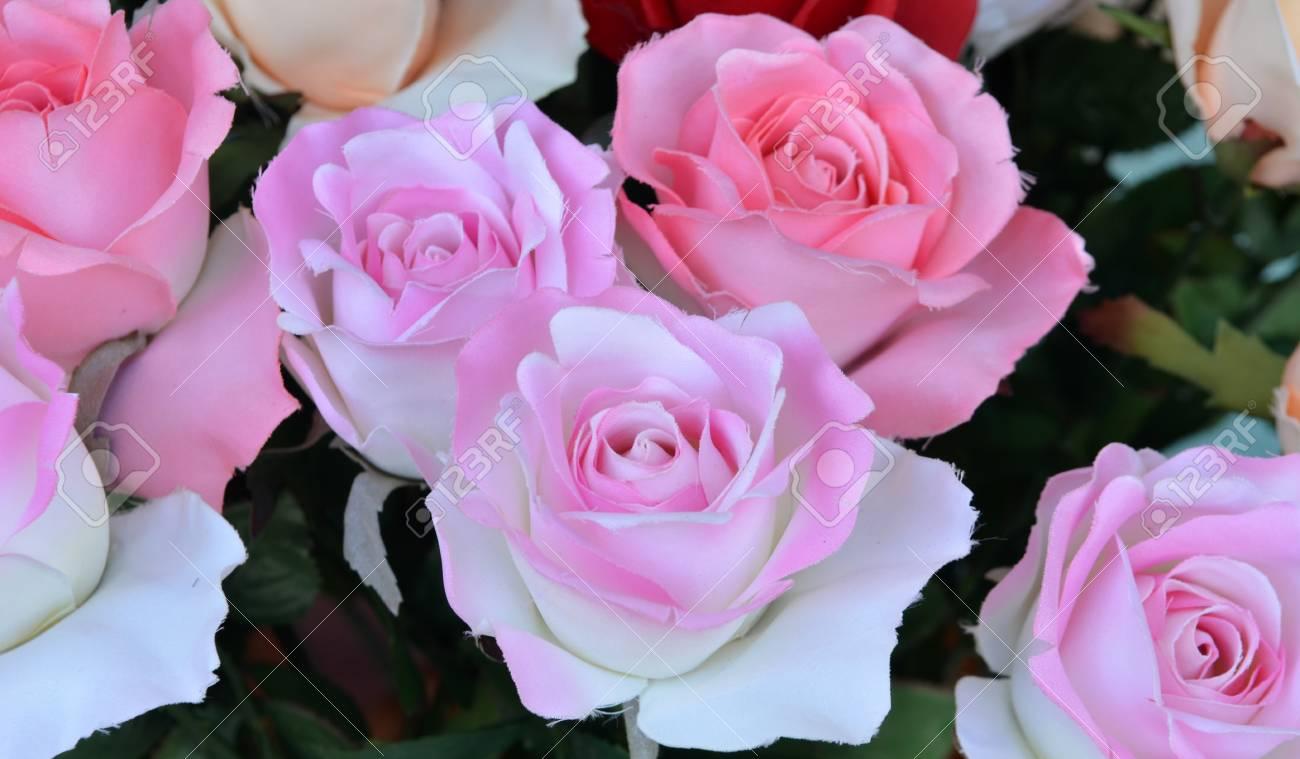 Beautiful rose flowers for valentine royalty free stok fotoraf beautiful rose flowers for valentine stok fotoraf 17418406 izmirmasajfo