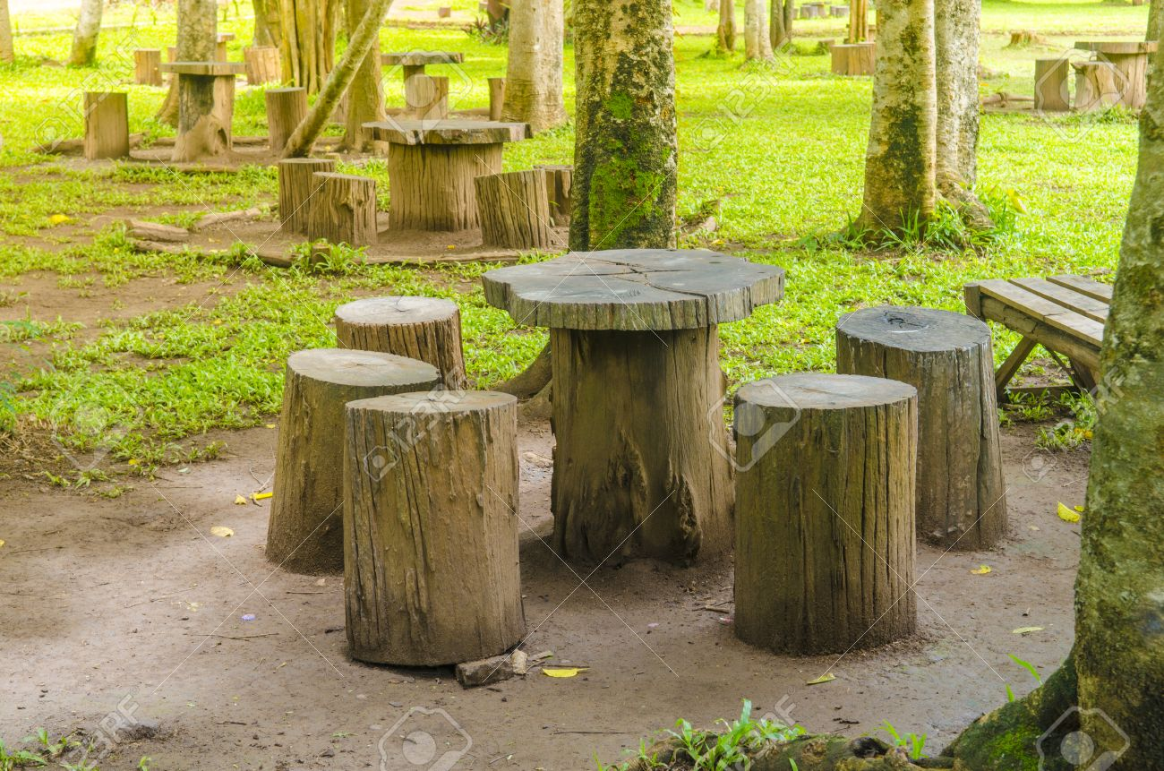 Stock Photo   stumps seats in the park  Garden furniture made from wooden  log. Stumps Seats In The Park  Garden Furniture Made From Wooden Log