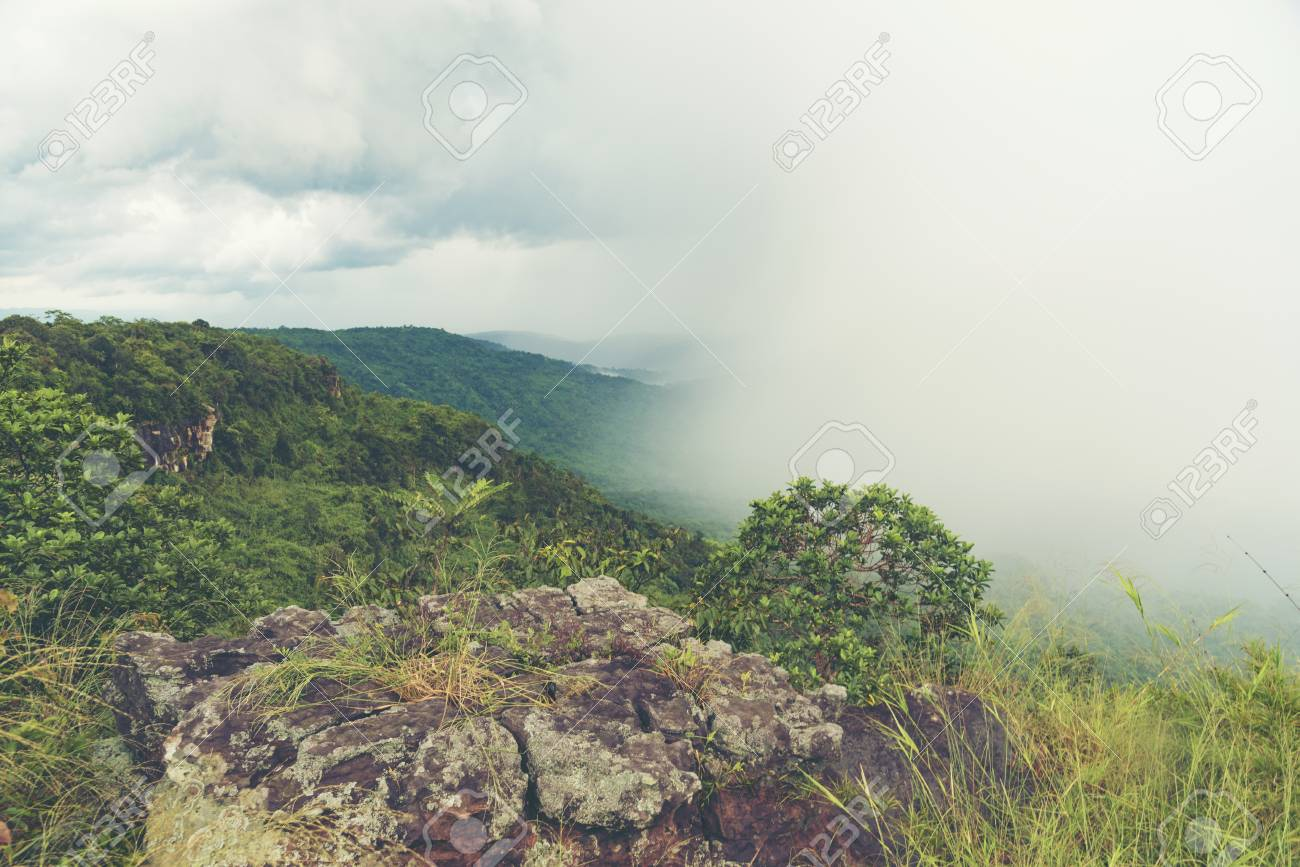 Landscape View Of Khao Yai Tropical Forest In Thailand Nature
