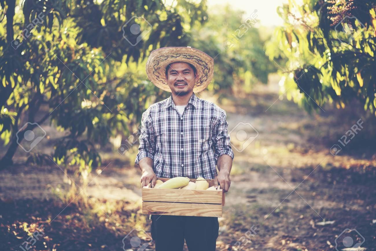 Young smart farmer, mordern mango farm, Thailand fruit - 121283703