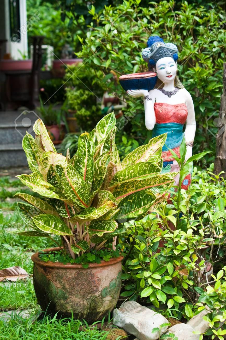 garden Stock Photo - 13432184