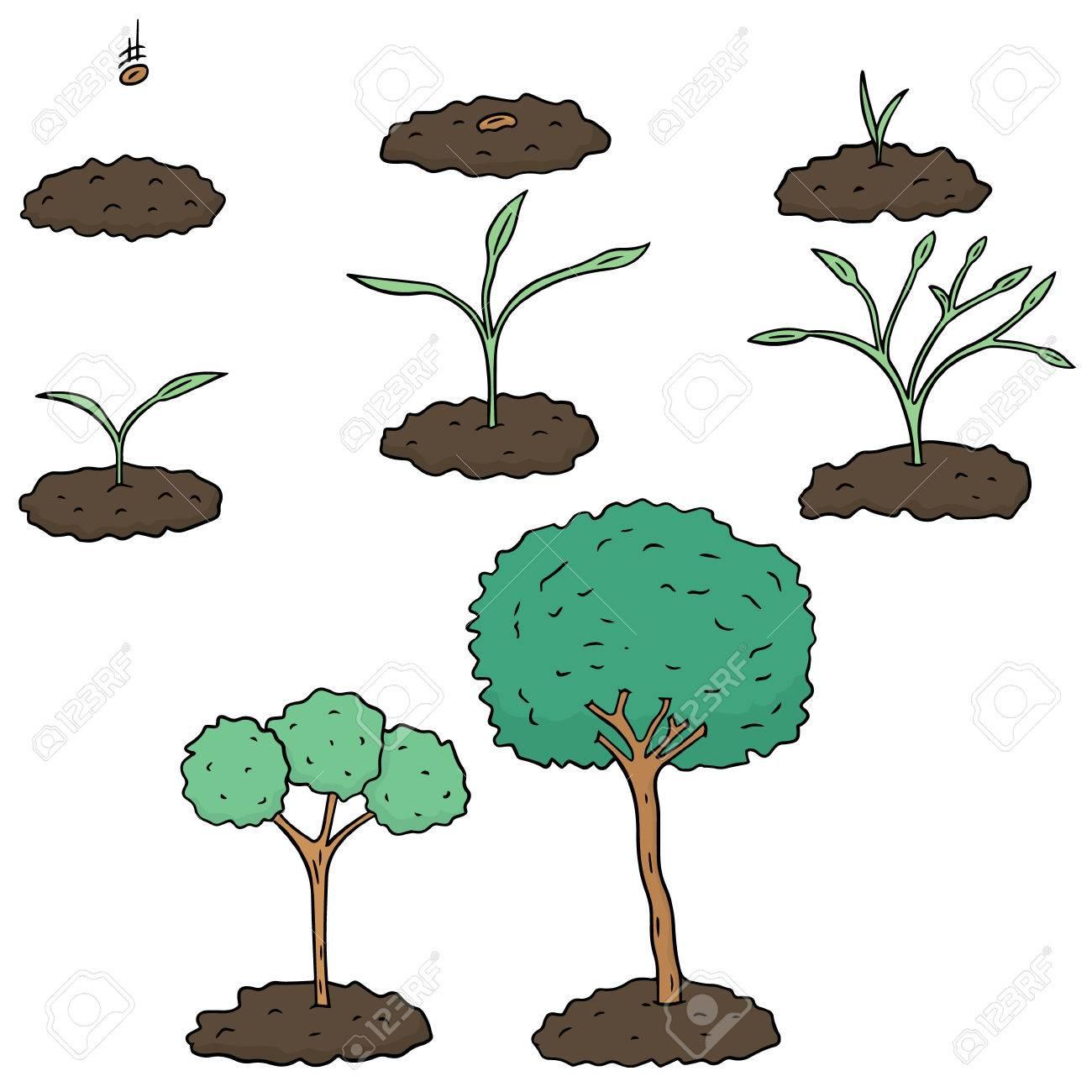 vector set of planting tree - 60829577