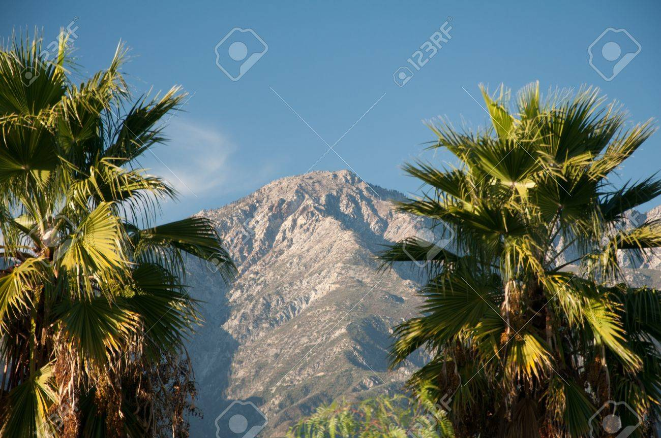 Mountains nature and palm trees under a Bright blue sky daylight Stock Photo - 13339709