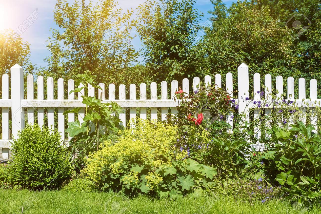 Staccionata Bianca In Legno scena di giardino con fiori e piante davanti alla recinzione di legno  bianca con alberi verdi e cielo blu sullo sfondo