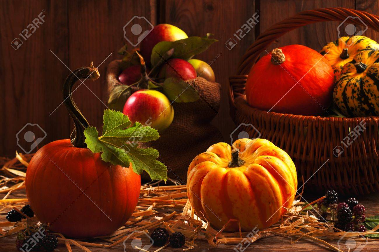 Harvest setting with pumpkins, gourds, orchard apples and blackberry fruits Stock Photo - 7701246