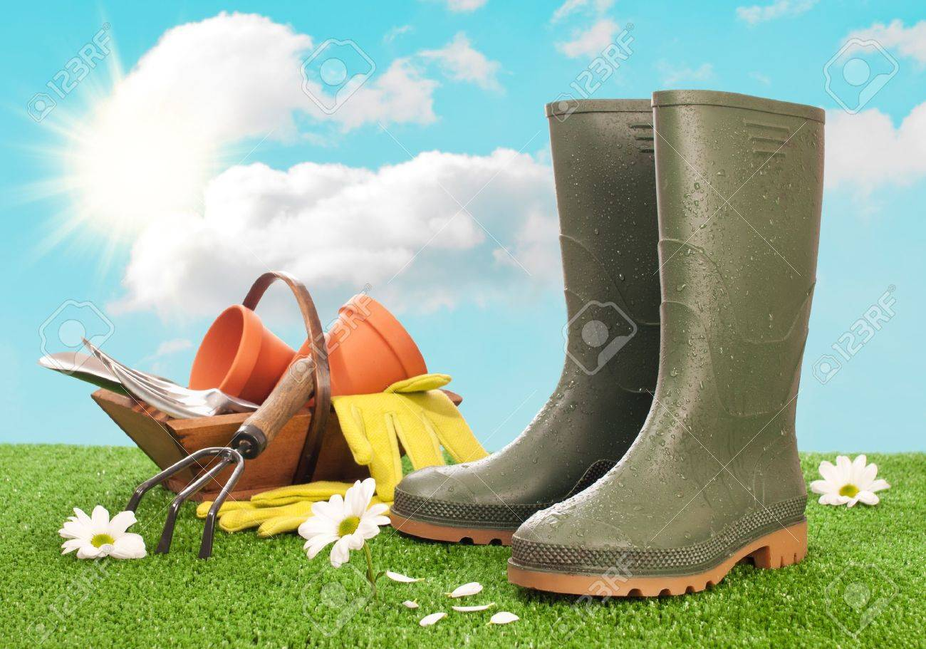 Wellington boots with trug of garden tools in background Stock Photo - 12463882