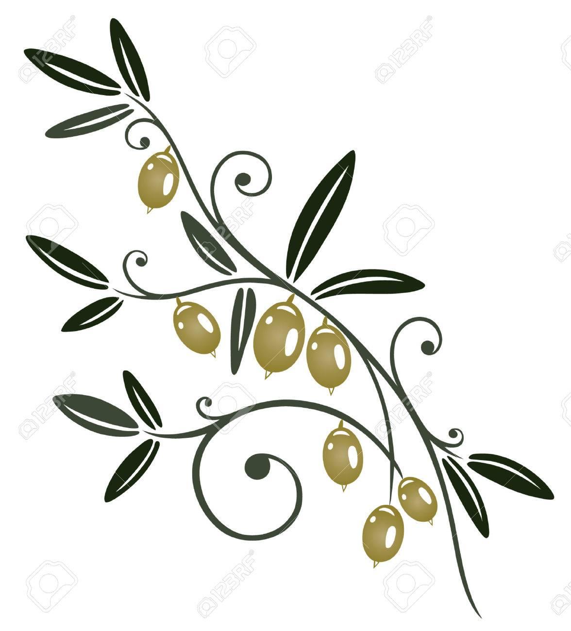 Colorful olive branch, kitchen design element Standard-Bild - 22437716