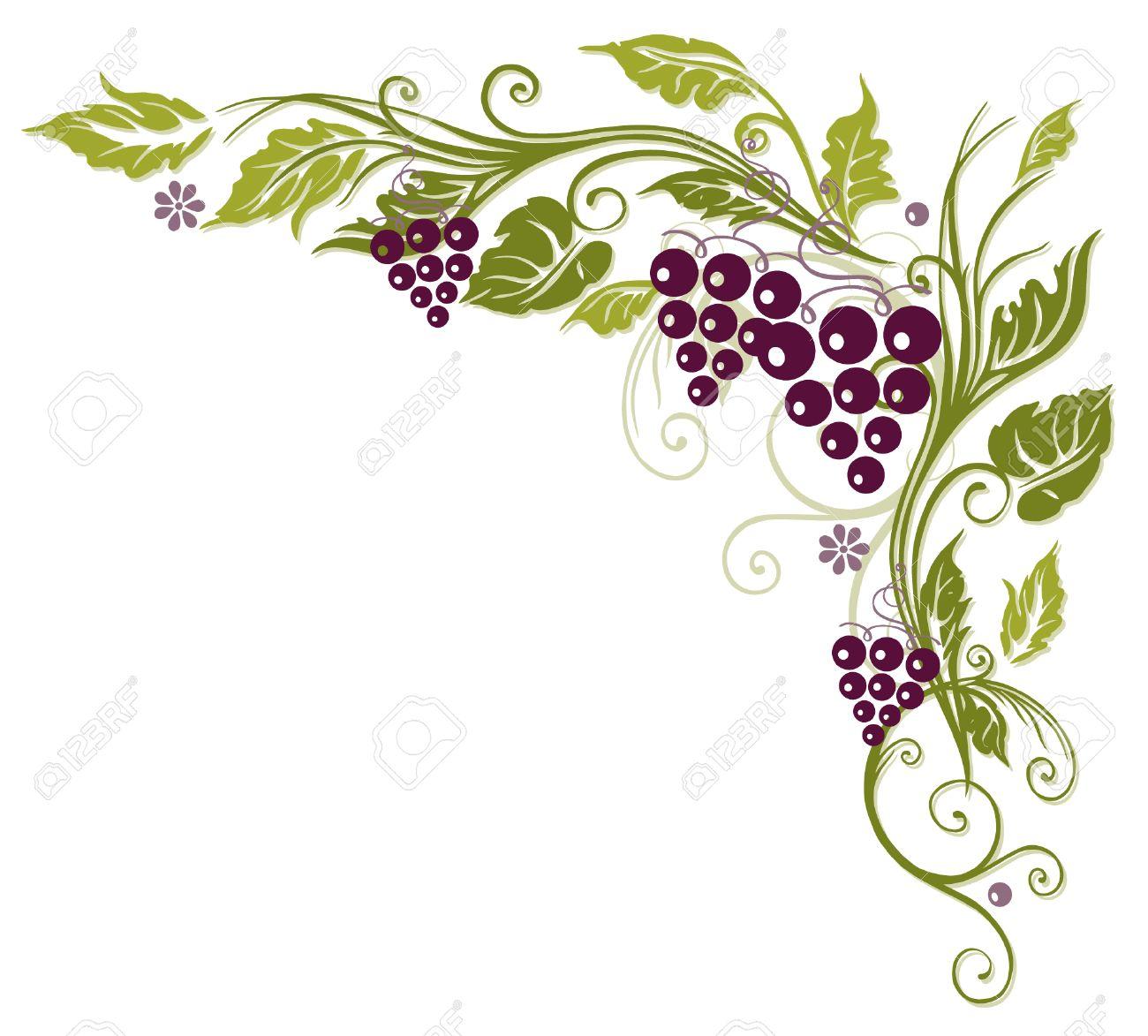 Bunte Ranke mit Trauben und Blätter Standard-Bild - 23246988