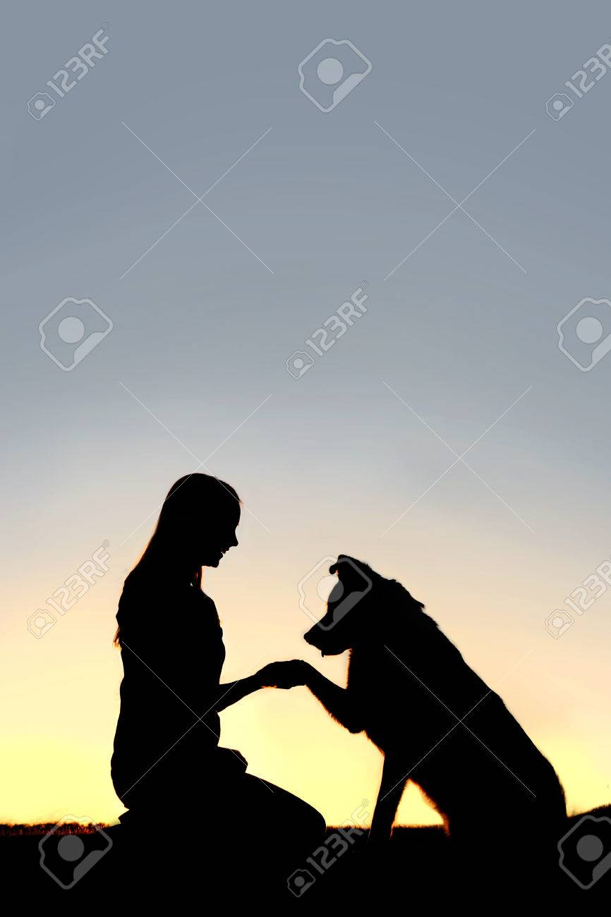 A silhouette of a young woman and her pet German Shepherd Mix Dog shaking hands at sunset. With copy-space in sky. - 38380576