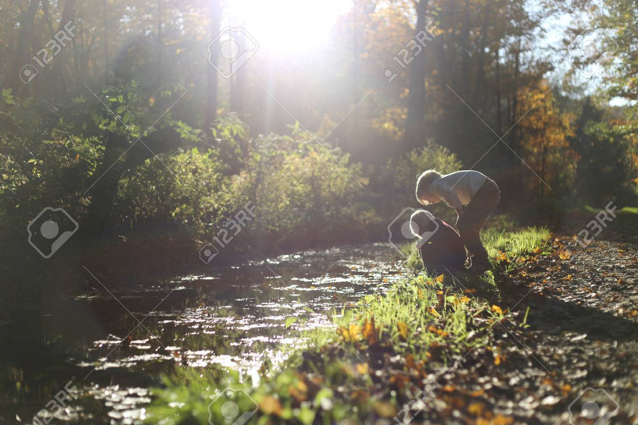 Two young boy children are looking in the water of a small stream as they are exploring outside in the woods on a dirt path. - 46334275