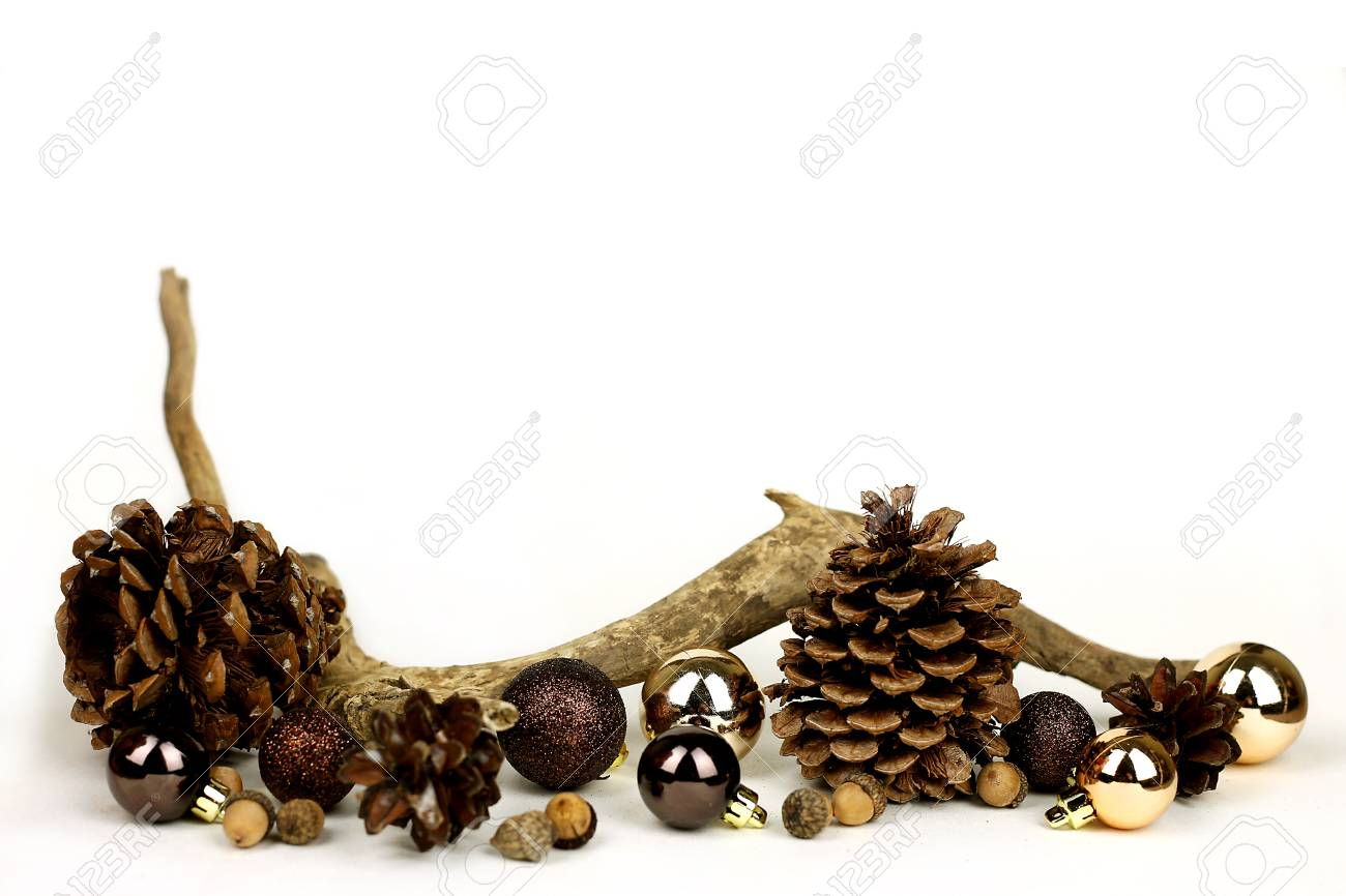 183 & Isolated weathered driftwood acornes and pinecones with gold..