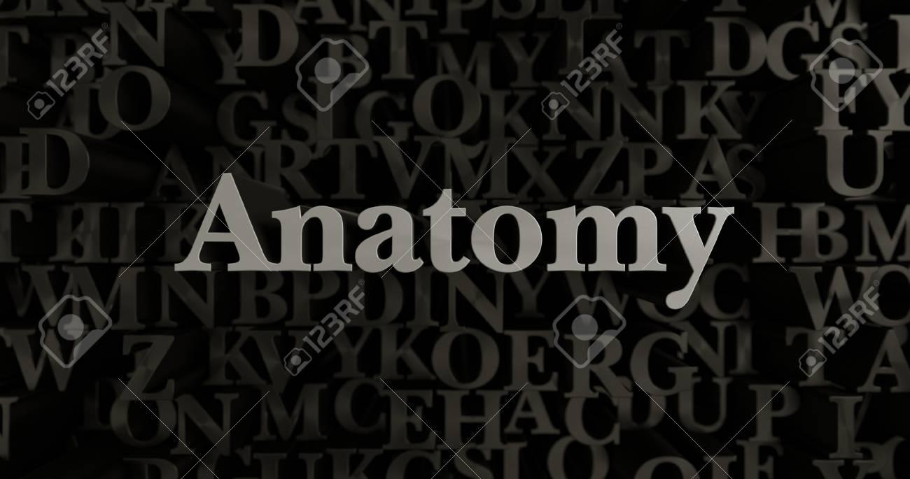 Anatomy - 3D Rendered Metallic Typeset Headline Illustration ...
