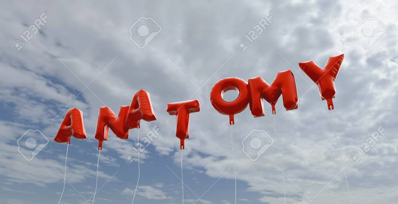 ANATOMY - Red Foil Balloons On Blue Sky - 3D Rendered Royalty ...