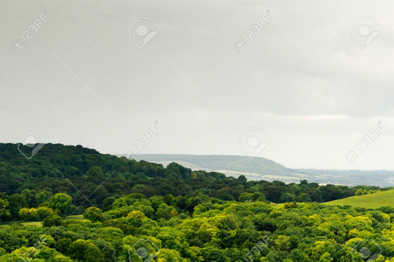 Cloudy view over the Chilterns in Buckinghamshire, England - 59225336