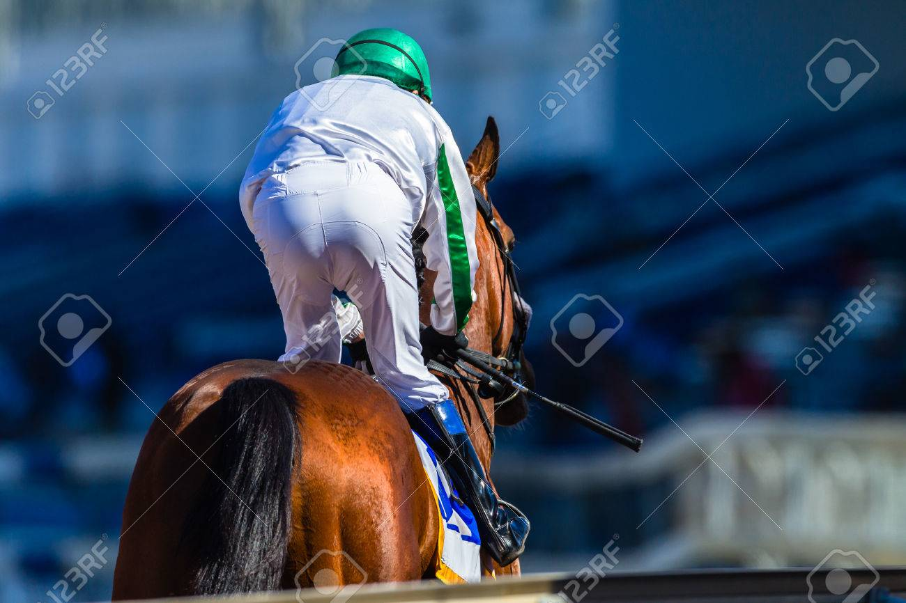 Race horse and jockey down to starting gates rear photo. - 63232689