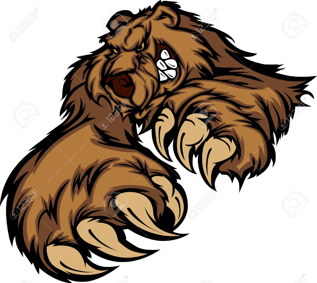 grizzly bear stock photos u0026 pictures royalty free grizzly bear
