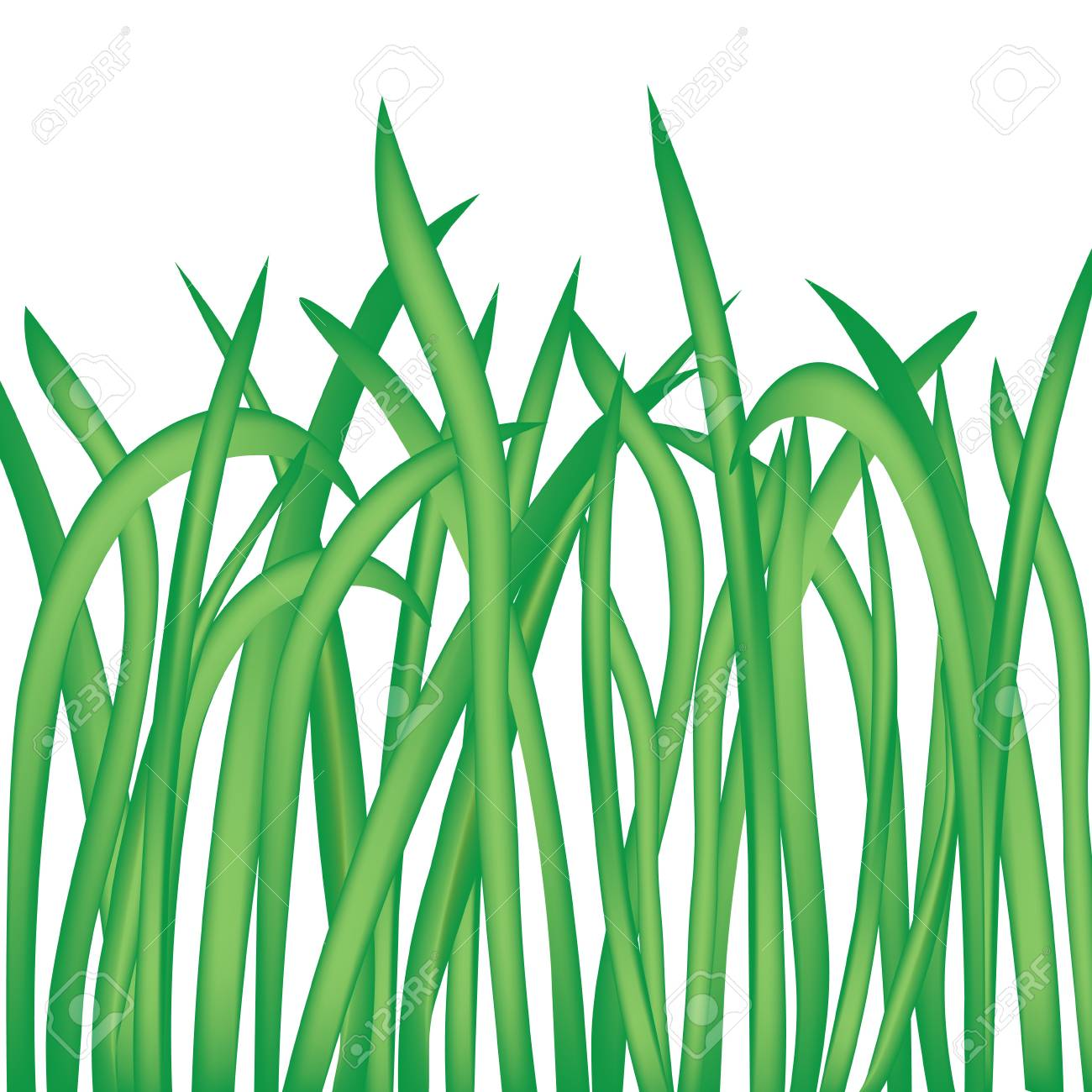 blades of grass isolated on white background vector illustration rh 123rf com grass vector to raster grass vector png